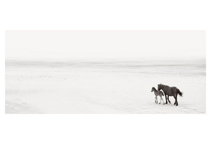 Beginnings by Drew Doggett