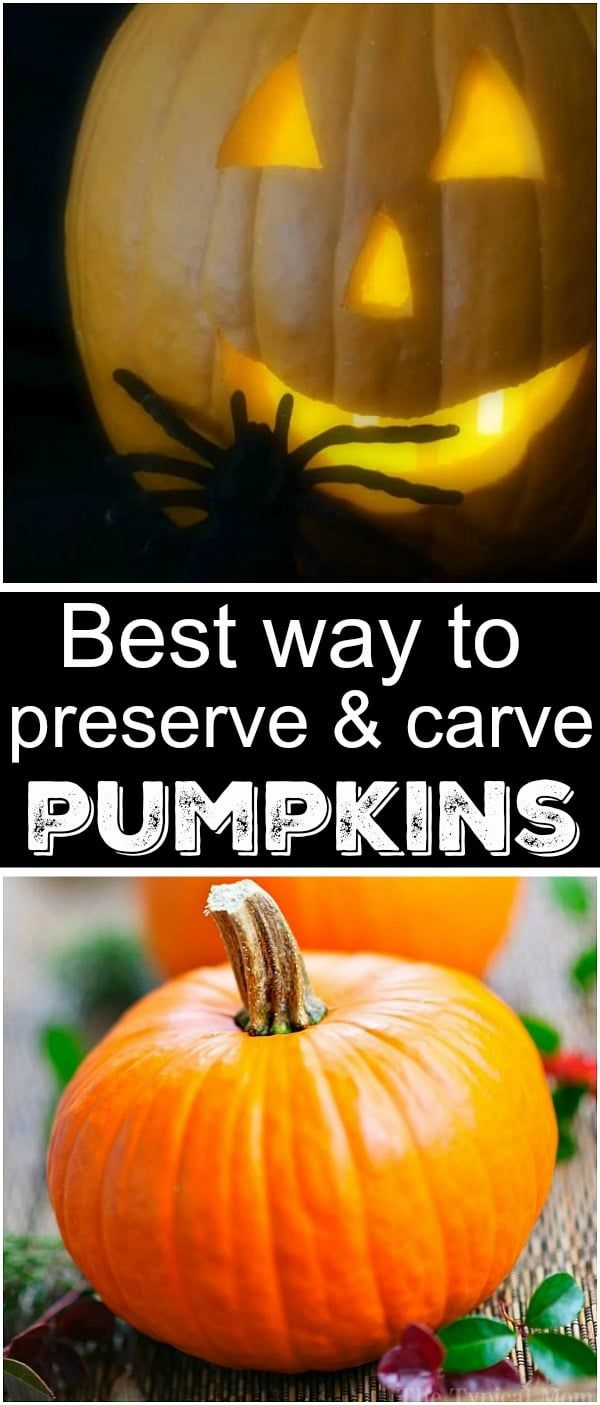 Tips For Carving Pumpkins Preserving Them Pumpkin Carving