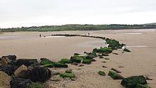 Fishing weir - Wikipedia