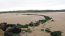 Fishing weir - Wikipedia