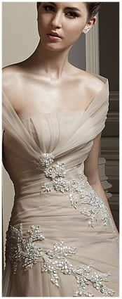 Benjamin Roberts Champagne Tulle Dress (2008)