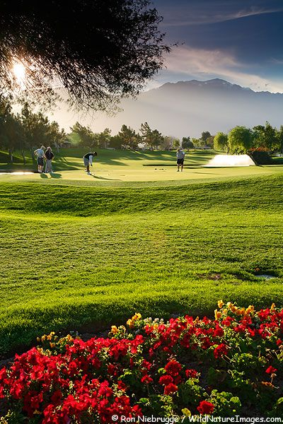 Golfers on the 14th Hole at the Westin Mission Hills Resort and Spa golf course in Rancho Mirage near Palm Springs, California