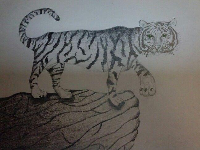 Week 7: Voortgang in het groot. Vandaag heb ik snorharen aan de kop van de tijger toegevoegd. Ik was vandaag helaas mijn pastelkrijtjes vergeten mee te nemen, waardoor ik de tekening niet kon afmaken. Volgende week maak ik het pootkussentje af met mijn vingerafdrukken.