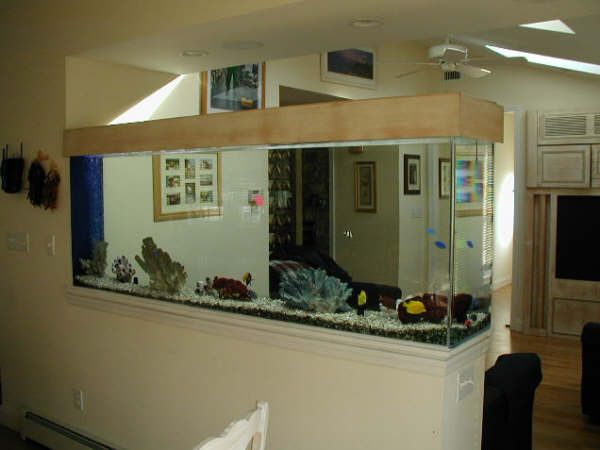 Find This Pin And More On Home Stylish Aquarium Design