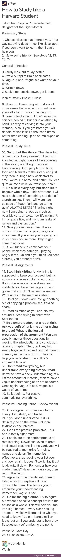 How to study like Harvard student: