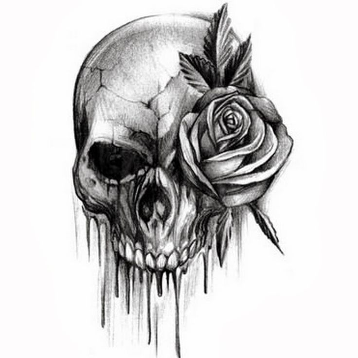 Rose Flower And Skull Black And White Tattoo Design Idea