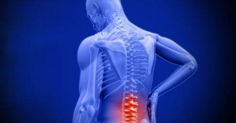 Πόνος χαμηλά στην πλάτη: Αίτια, ανάλυση και ποιες κινήσεις θα σας ανακουφίσουν: http://biologikaorganikaproionta.com/health/251688/