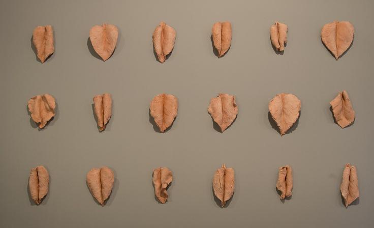 Varias figuras hechas con grafito imitan los diferentes tipos de hojas