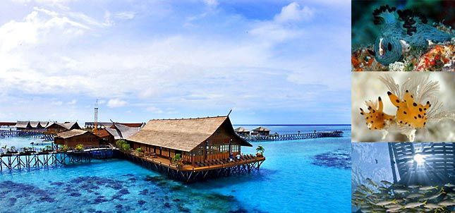 Accommodation on Kapalai Island for Scuba Diving on Sipidan