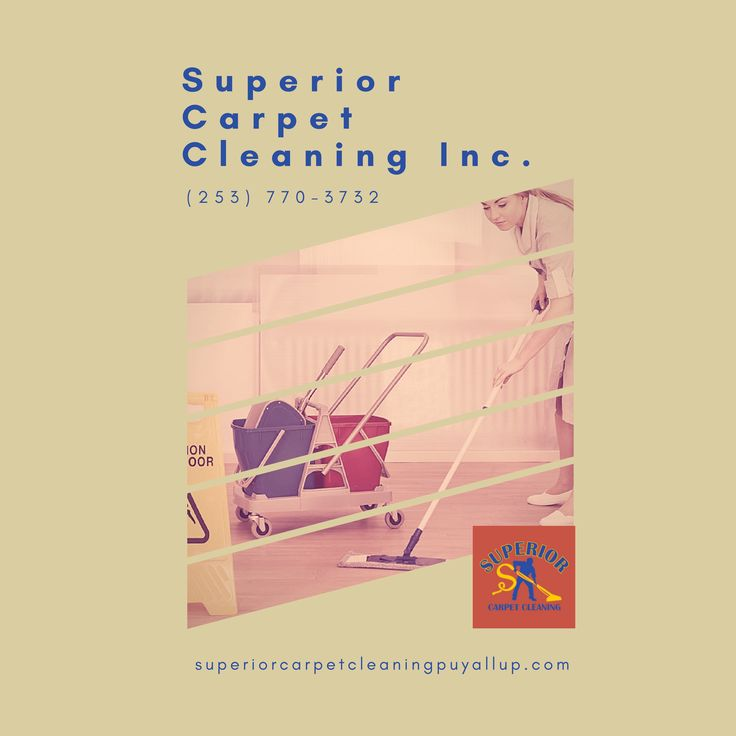 Carpet Stretching and Repair in Puyallup, WA House Cleaning Move in/out in Puyallup, WA Roof and Gutter Cleaning in Puyallup, WA Pressure Washing in Puyallup, WA Free Estimate Cleaning in Puyallup, WA Emergency Service 24/7 Water Extraction in Puyallup, WA Organic Carpet Cleaning in Puyallup, WA Apartment Cleaning in Puyallup, WA Carpet and Fabric Protection in Puyallup, WA Commercial Carpet Cleaning in Puyallup, WA Affordable Carpet Cleaning in Puyallup, WA Professional Carpet Cleaning