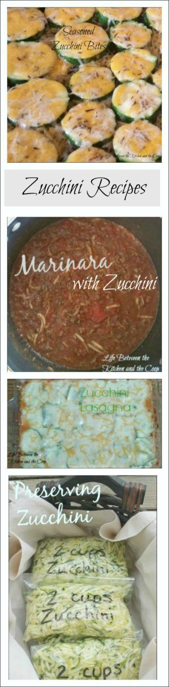 Do you have lots of fresh zucchini from your garden, but don't know what to do with it all? Wasting homegrown produce would be a shame! There are lots of great options of how to prepare zucchini! Click through to the post for a few of my absolute favorite