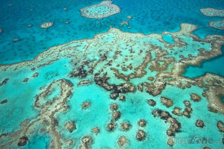 Fotka, Foto Velký bariérový útes v Austrálii (Austrálie)