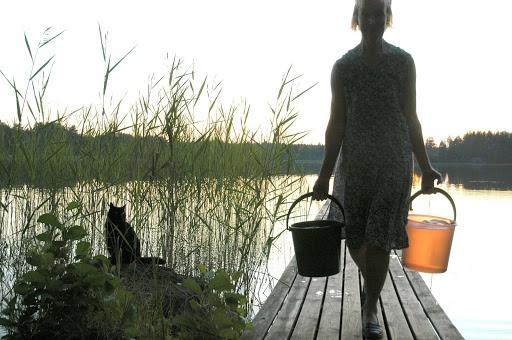 Saunapolulla asteleva emäntä kissoineen - kuva: Esko Koistinen