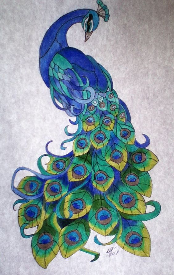 Stained glass peacock:  I want to make a big one that runs down our glass door                                                                                                                                                     More