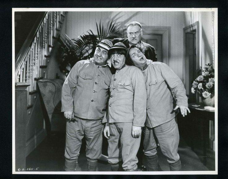 ac49f894637ea5559a438b810cec9225--the-three-stooges-comedy.jpg (736×580)