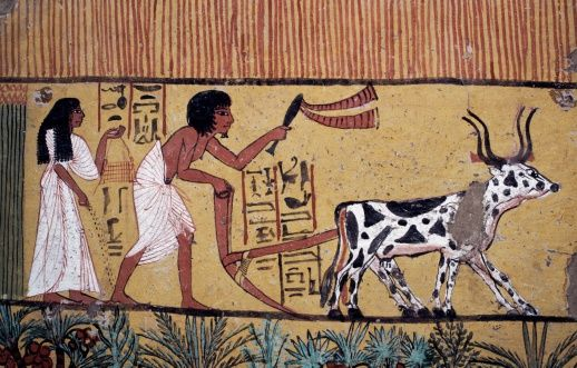 Ploughing scene, wall painting, Tomb of Sennedjem, Valley of Kings, Luxor, Thebes (UNESCO World Heritage Site, 1979), Egypt, Egyptian civilization, New Kingdom, Dynasty XVIII