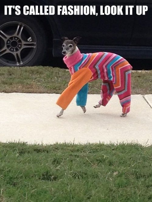 What I feel like every time I try a new outfit