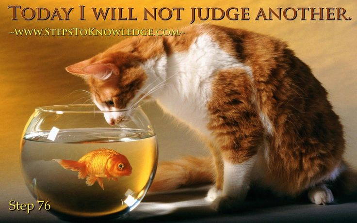I will not judge another today www.StepsToKnowledge.com