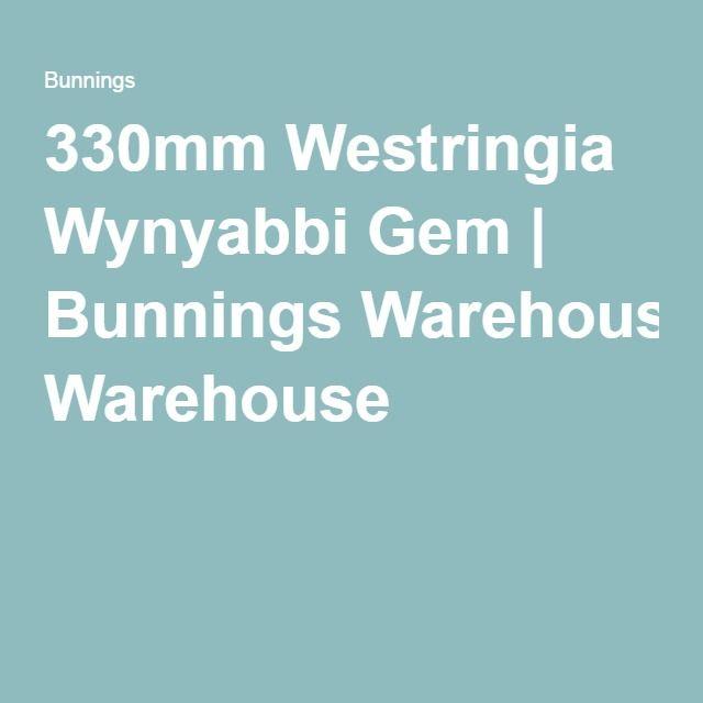 330mm Westringia Wynyabbi Gem | Bunnings Warehouse