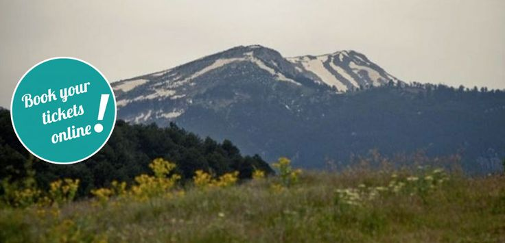 Day Tour to Mount Olympus, Dion, Vergina from #Halkidiki #Greece  #daytour #tickets #thingstodo