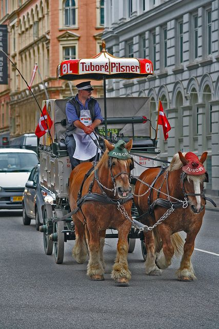 Carlsberg, the fifth biggest brewery in the world originates from Copenhagen and is one of the largest Danish companies. At the visitor center in Valby, just outside the city center, is the Carlsberg Beer Museum. As part of the museum they have some Dutch brewery horses.  The horses and wagens still parade around Copenhagen  from time to time.