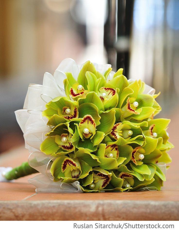 ber ideen zu orchideen brautstr u e auf pinterest pflaumen hochzeit hochzeitsbilder. Black Bedroom Furniture Sets. Home Design Ideas