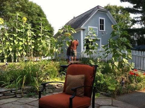 ¿Verano en Nueva Inglaterra? Explora esta zona de Estados Unidos, típica y desconocida. La casa tiene todo tipo de curiosidades, como un precioso jardín y una habitación para #yoga. #USA