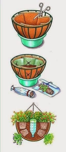 Plant a Winter Hanging Basket
