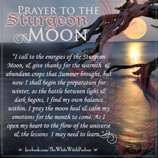 Sturgeon Moon, August Full Moon, Moon Names, Book of shadows, prayer, blessing…