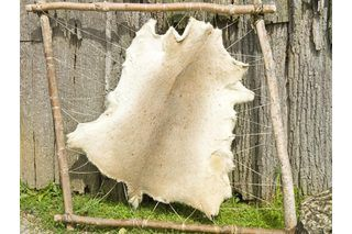 Take your hunting to the next level and tan the deer hides after cutting up the meat. Deer hides are used to make leather jackets or boots or as wall decor. If you are just learning tanning and taxidermy, use this easy method of tanning the hide, which combines salts and alum to bring the hide to a tanned and preserved state.