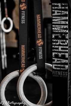Hammerhead Fitness: Gymnastic Ring Exercises for Beginners