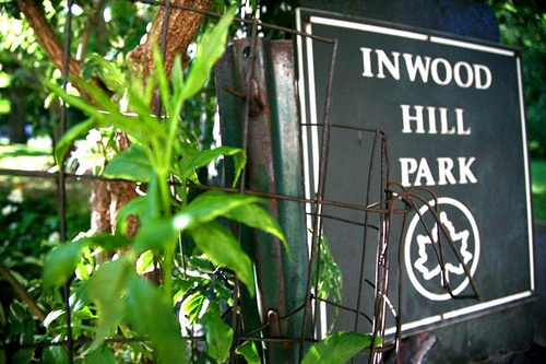 Park Portfolio – Inwood Hill Park