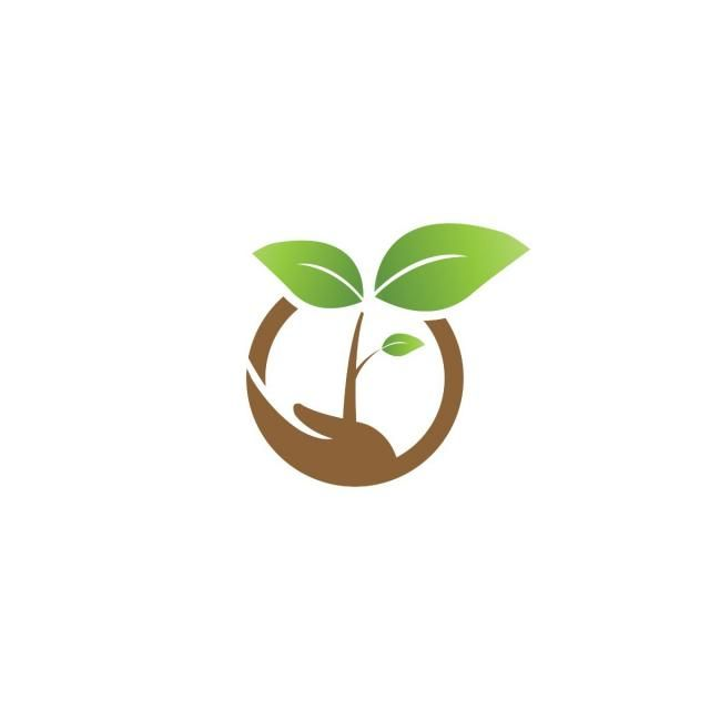 Elegant Sprout On A Hand And Agriculture Logo Design Template Vector Vector And Png Agriculture Logo Environmental Logo Design Logo Design Template
