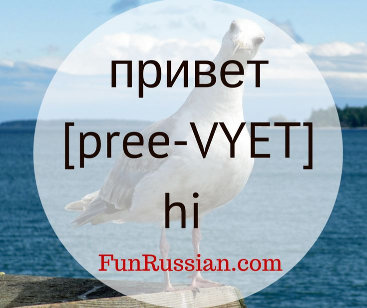 "Basic Russian Video Lesson: How to Say ""Hi"", ""Bye"", ""Thank You"", ""Please"" and ""You are Welcome"" in Russian. Learn Russian words, learn basic Russian, Russian for beginners, hello in Russian, hi in Russian, Russian greetings."