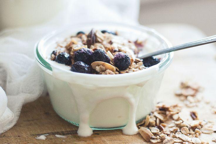 Lactose free plain yogurt | Natrel