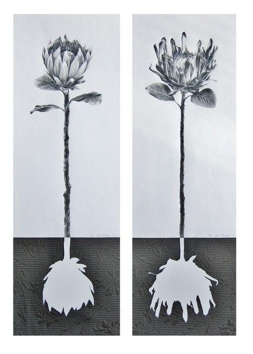 protea series - Ira van der Merwe, Artist and Art Teacher