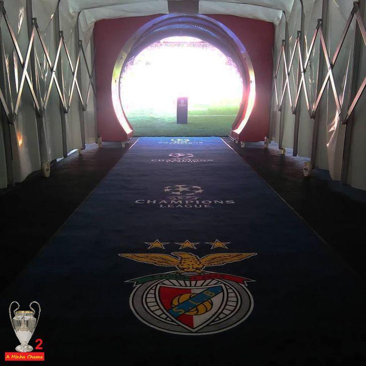A Minha Chama: LdC FG1: SL Benfica 1 CSKA 2