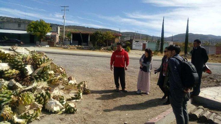 Como parte de las acciones para posicionar los atractivos turísticos de Oaxaca en el mercado internacional, la Secretaría de Turismo