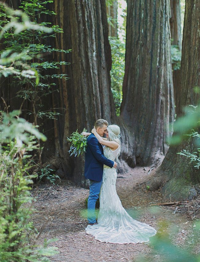 first look in the redwoods!