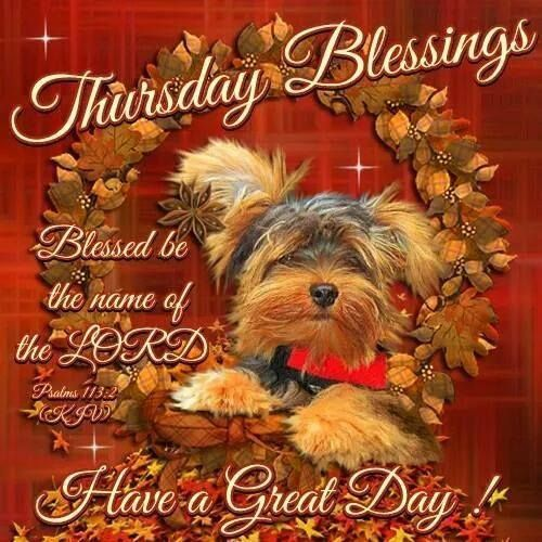 Thursday Blessings, Be Blessed The Name Of The Lord, Have A Great Day