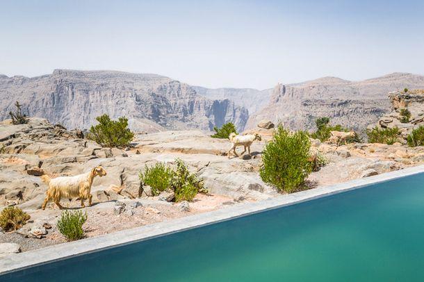 Отель на краю обрыва в Омане