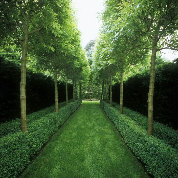 Peter Fudge Garden design