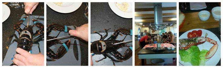 Workshop kreeft koken en de dilemma's die daarbij komen kijken.  http://www.boterblommeken.nl/blog.php