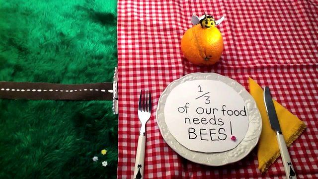 This is the winning entry for the New Zealand National Beekeepers Association (NBA) school video competition to show the importance of bees and how we can help NZ Bees thrive. My friends and I from Stonefields School researched the subject and made this video together.