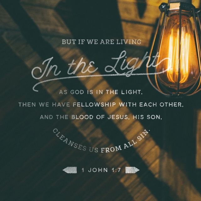 """""""But if we walk in the light, as he is in the light, we have fellowship with one another, and the blood of Jesus, his Son, purifies us from all sin."""" 1 John 1:7 NIV http://bible.com/111/1jn.1.7.niv"""