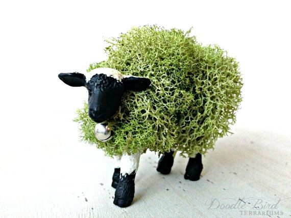 Moss Animal Topiary Miniature Lamb Sheep Figurine by DoodleBirdie on Etsy, $25.00 (Presevered lichen- no care required!)