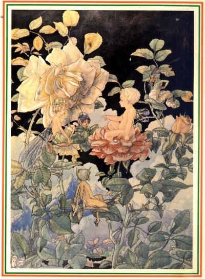 Fairies Among the Roses—Harold Gaze