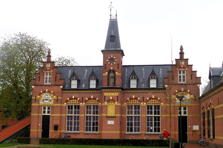 De Latijnse School is in 1587 door Hendrik van Ruijschenberg gesticht op de plek waar het middeleeuwse houten kasteel van de heren van Gemert heeft gestaan, dat in 1479 werd verwoest. Het huidige gebouw dateert uit 1891. Op deze school werden de leerlingen intellectueel en godsdienstig gevormd. Voor arme kinderen waren er twaalf beurzen beschikbaar gesteld, waarvan de helft voor leerlingen uit Gemert waren bestemd. Maar ook kinderen uit de burgerij en adel bezochten de school.