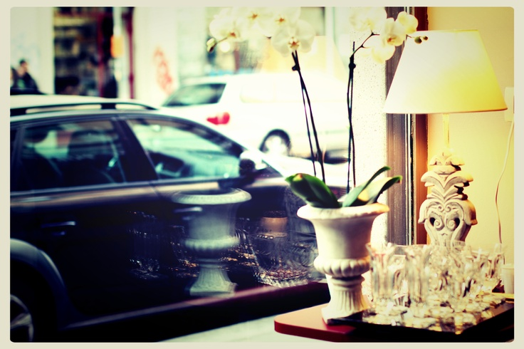 Orchid by the window | Café des Artistes set up #orchid #window #atmosphere #lamp