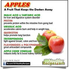 Apple - A Fruit That Keeps the Doctors Away MALIC ACID & TARTARIC ACID for liver and digestive system disorder PECTIN prevents protein within the intestine from going bad URSOLIC ACID accelerates calorie burn and help in weight loss QUERCETIN helps promote lung function TRITERPENOIDS fight against breast, colon and liver cancers FLAVONOIDS & POLYPHENOLS great antioxidant compounds APPLE CIDER VINEGAR reduces belly fat &	 boost kidney function